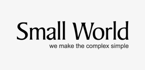 small_word_logo